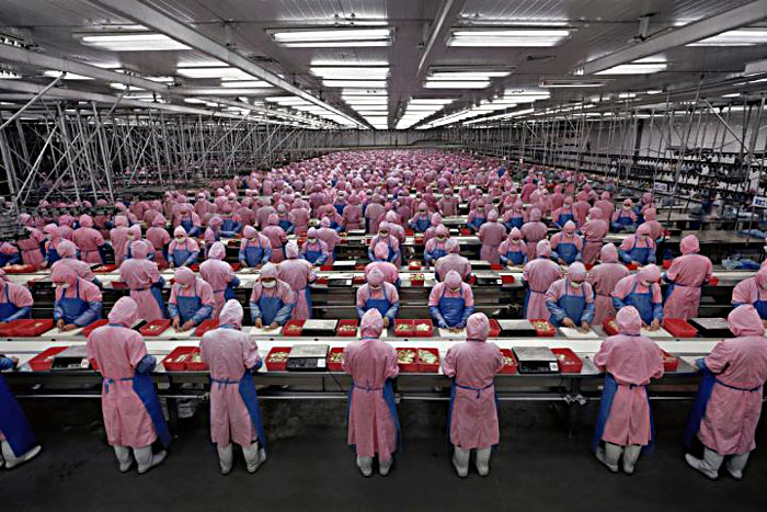 "Chinese factory workers on the production line enjoying the ""flourishing"" that market capitalism provides."